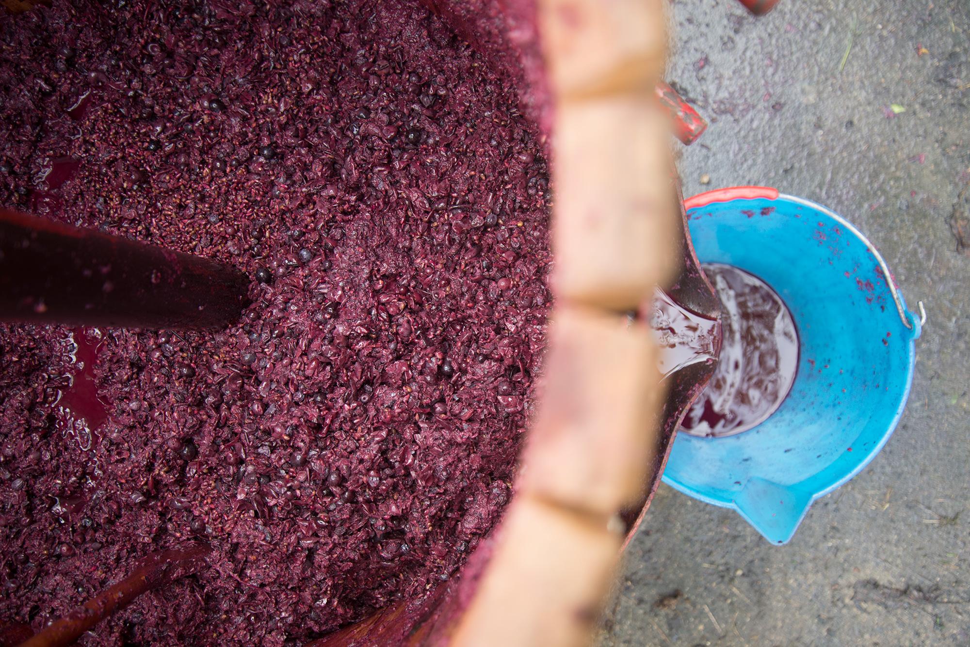 wijnpersen-5